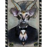AMatus-Hell-O-Kitties-HP-Lovecat